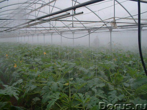 Поддержание микроклимата в теплицах - Промышленное оборудование - Предлагаем Вашему вниманию систему..., фото 1